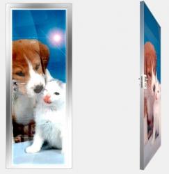 Двери СКС детская линия Animal
